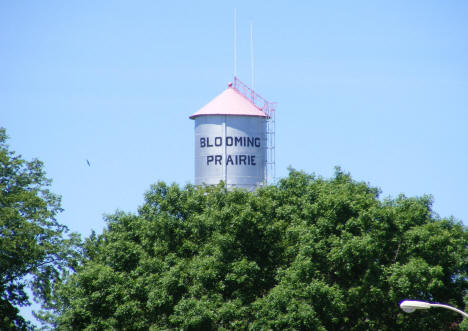 Water Tower, Blooming Prairie Minnesota, 2010