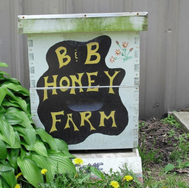 B & B Honey Farm, Houston Minnesota